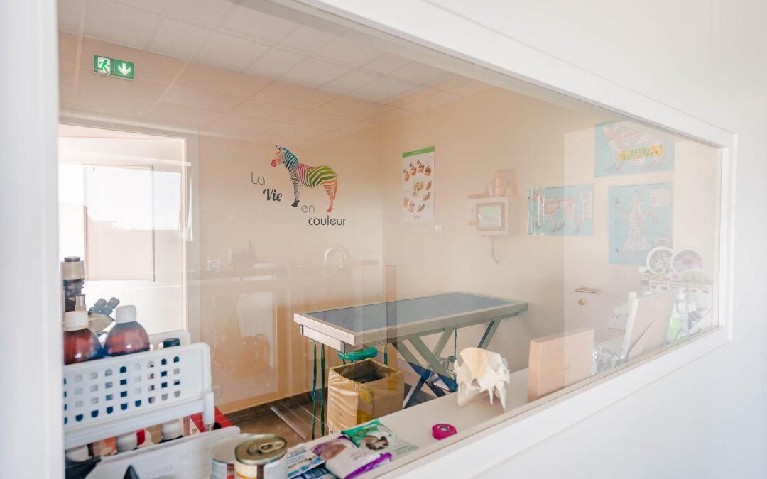 Cabinet vétérinaire près de Mulhouse