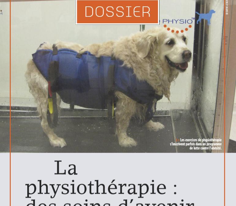 La physiothérapie : des soins d'avenir